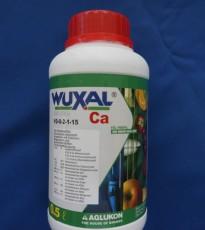 북살(서스펜션)Ca,250,1000ml,비료, 영양제