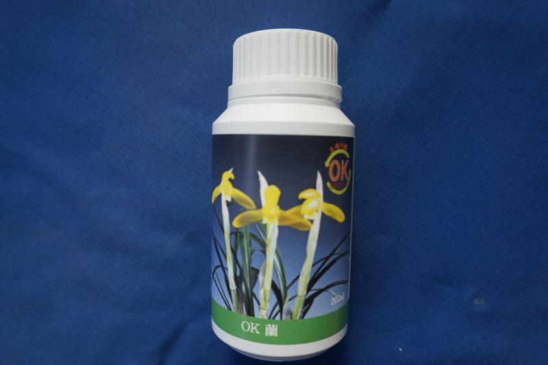 오케이 蘭 (ok,orchid)